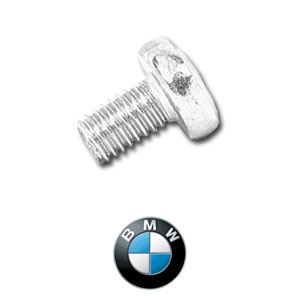 BMW License Plate Screws @ Car Plate Screws